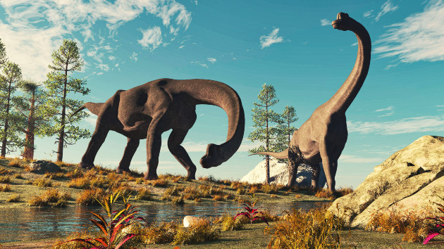 Two new species of dinosaur species discovered !-